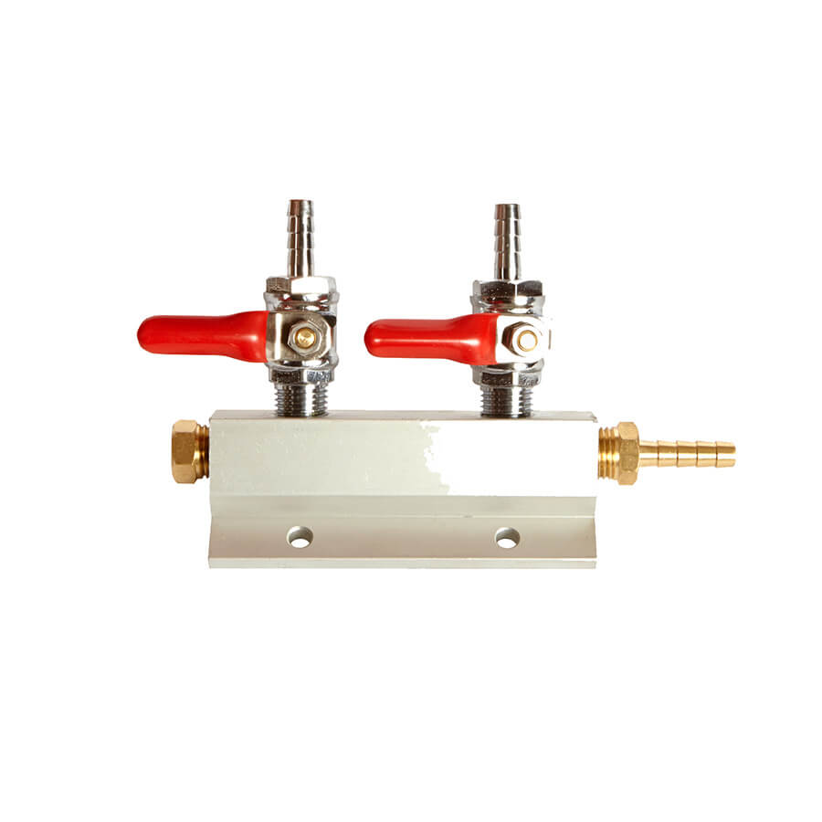 Two way gas manifold beverage elements